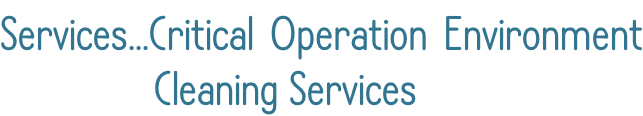Services...Critical Operation Environment                Cleaning Services